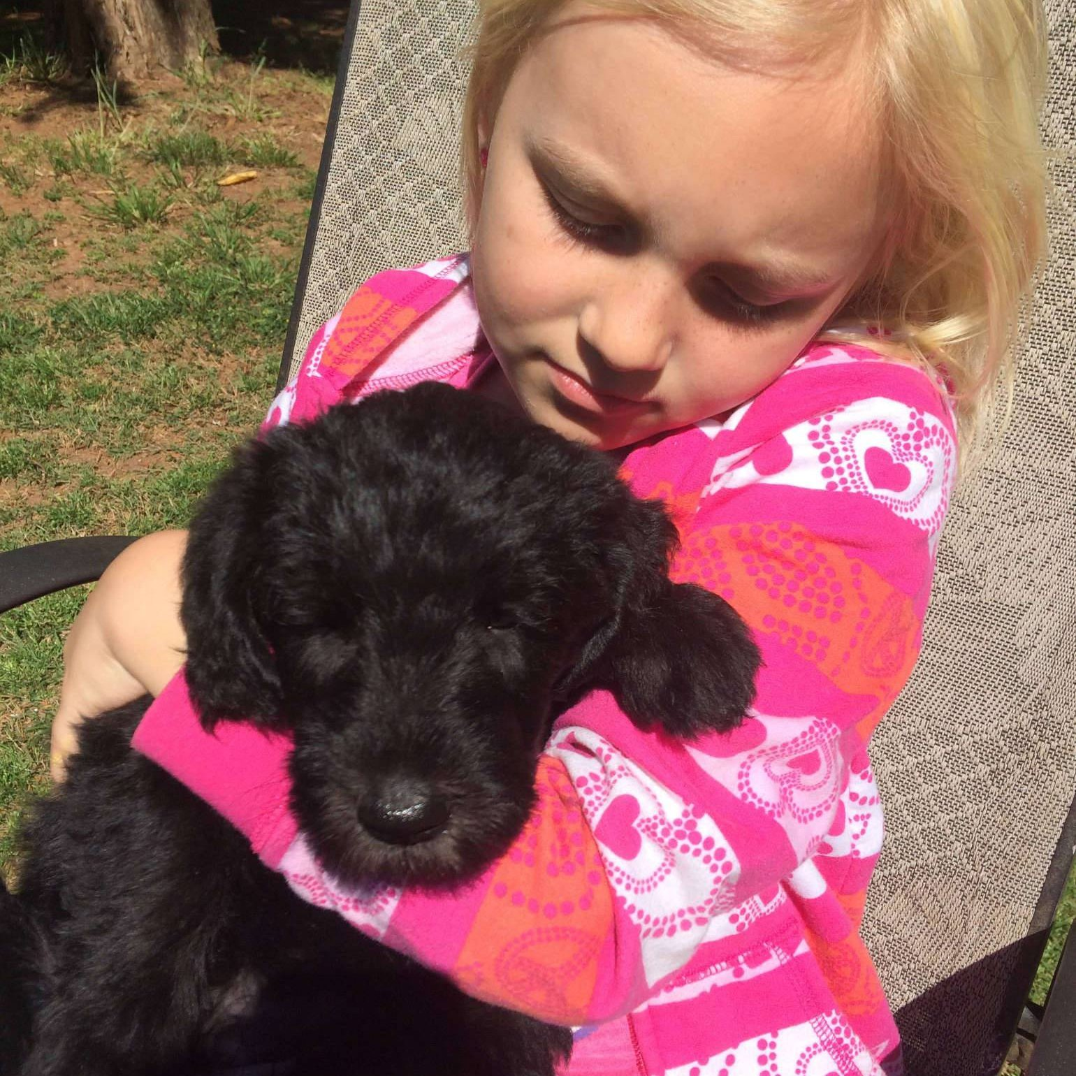 McKinley with black labradoodle puppy