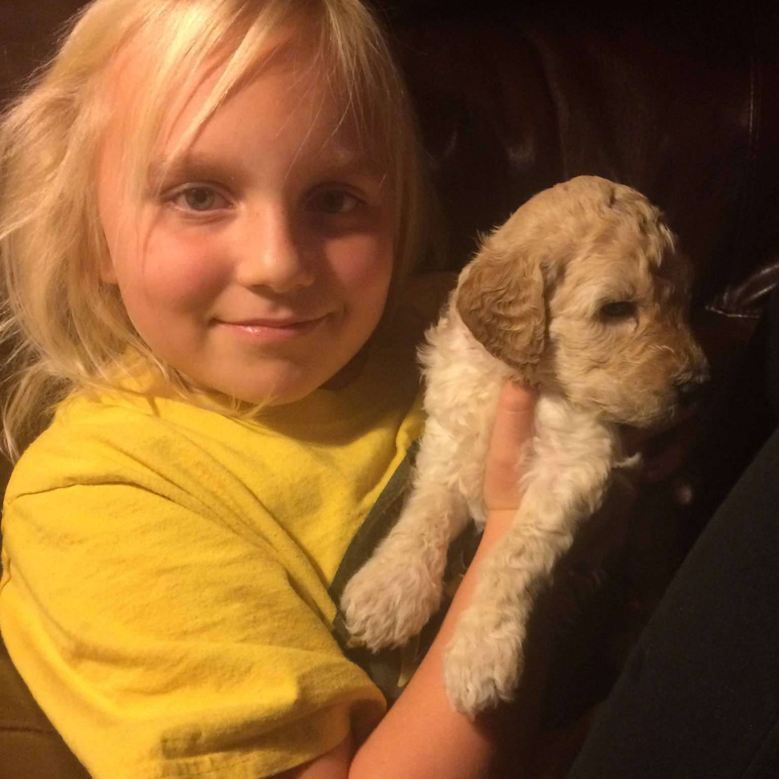 McKinley with cream labradoodle puppy